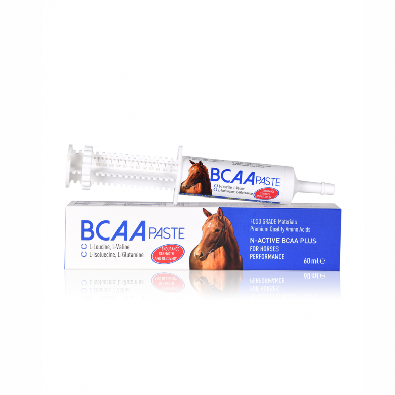 N-ACTIVE BCAA PLUS PASTE